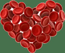 II. akcija dobrovoljnog darivanja krvi u 2018. godini