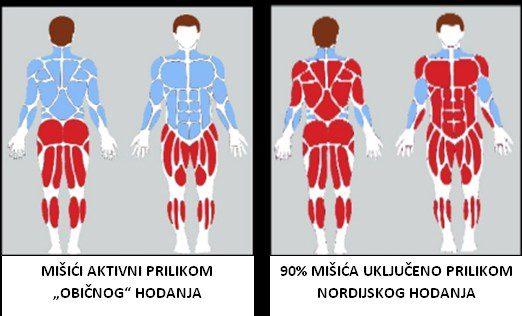 """Nordijsko hodanje u sklopu programa očuvanja i prevencije bolesti projekta """"Aktivni zajedno"""" UP.04.2.1.09.0005 (10.11.2020.)"""